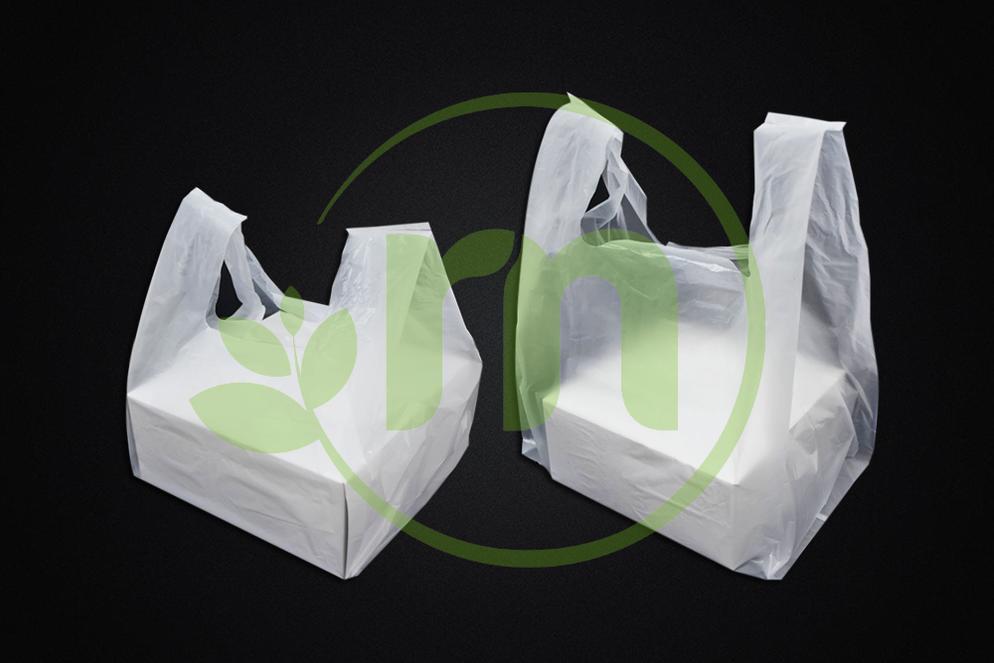 CARRIER BAG FOR CAKE BOX Image